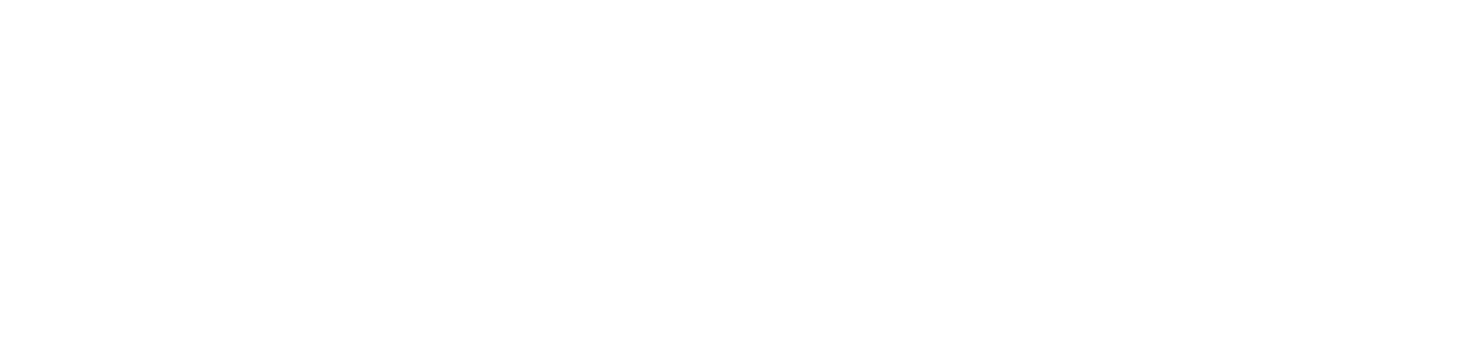 MD logo white